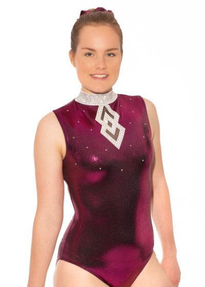 Eudora ZH473 Blackberry and mesh high neck leotard front