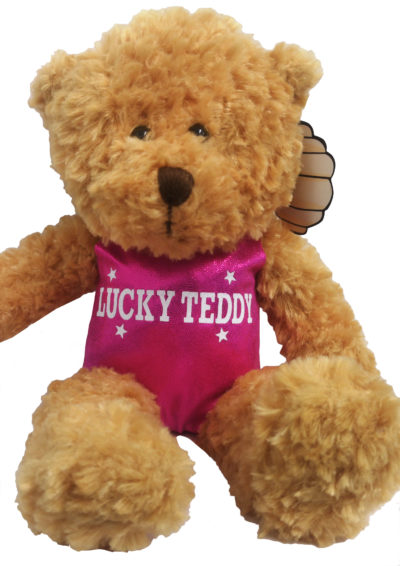 Named teddy in lipstick pink leotard