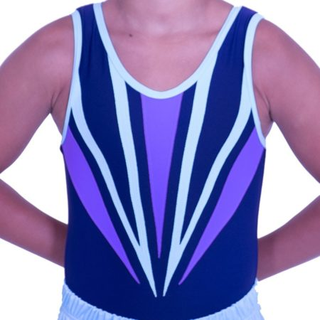 BV545N02 N32 navy and purple boys striking leotard