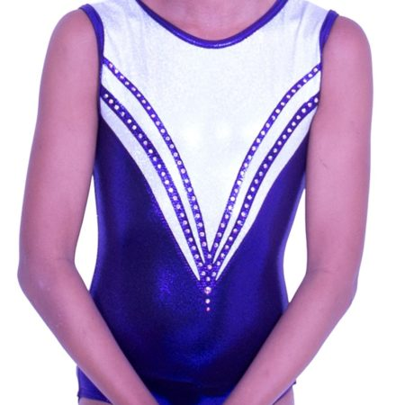 Z559S07 S69D purple and silver gymnastics leotard sleeveless
