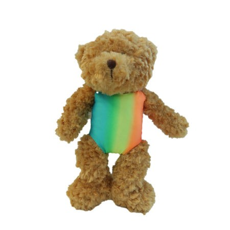 RAINBOW TEDDY FRONT